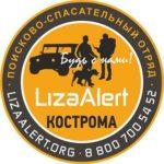 Лиза Алерт Кострома